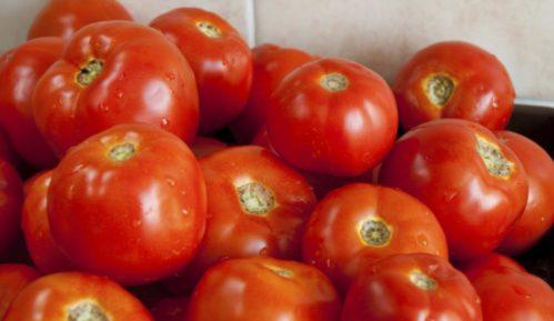 Bez zaštitne cene paradajza 14