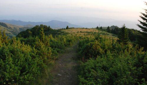 Srbijašume: Bez naplate takse u zaštićenim područjima 2