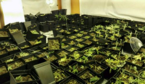 Lončar: Srbija posvećena borbi protiv droge 1