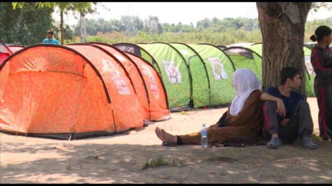 Sve manje migranata koji ilegalno ulaze u Srbiju 1