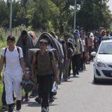 Beogradski centar za ljudska prava: Sistem azila u Srbiji još uvek nije efikasan 5