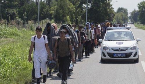 Beogradski centar za ljudska prava: Sistem azila u Srbiji još uvek nije efikasan 14
