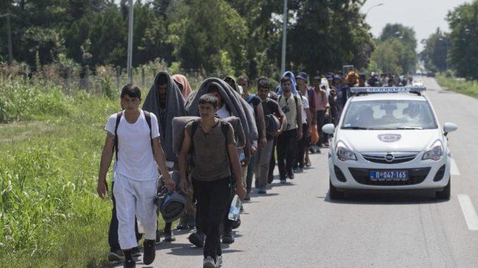 Beogradski centar za ljudska prava: Sistem azila u Srbiji još uvek nije efikasan 3
