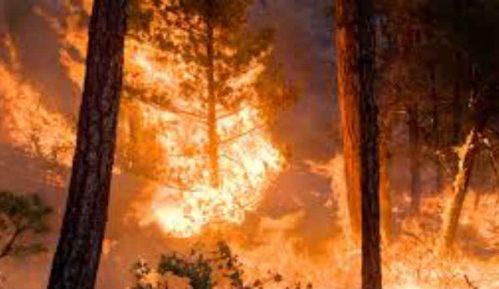 Požar sinoć u Rijeci 14