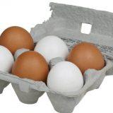 Pojačane kontrole jaja, ribe i mesa pred uskršnji praznik 15