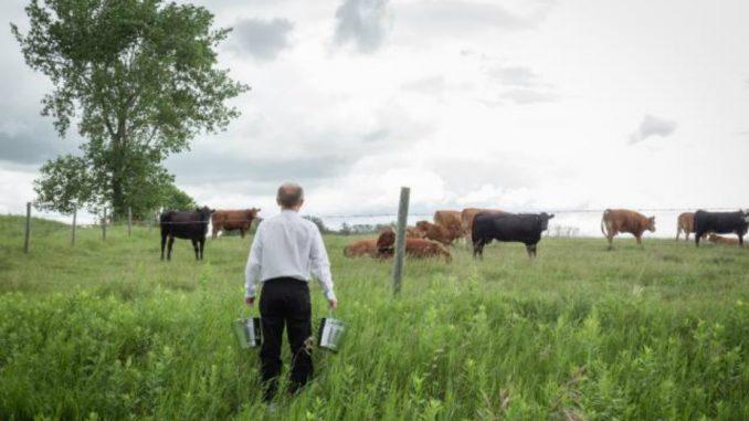 UDS traži lakše dobijanje dozvola za kretanje i rad poljoprivrednika 3