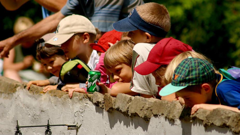 UNICEF: Broj dece u Srbiji manji za 23 odsto 1