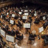 Orkestarska akademija 5