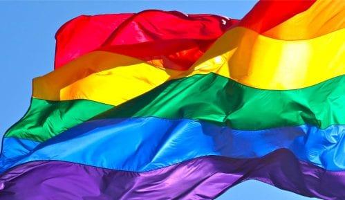 """Ne """"lečenju"""" homoseksualnosti 8"""