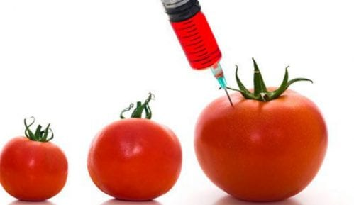 Monarhisti Srbije traže zabranu proizvodnje i prodaje GMO hrane 10