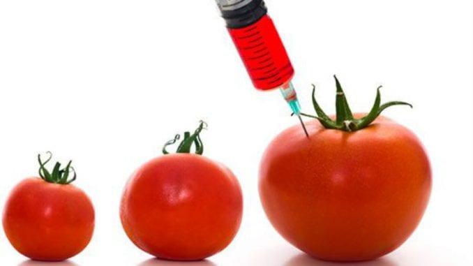 EK: Aktuelizovane dileme o GMO 1