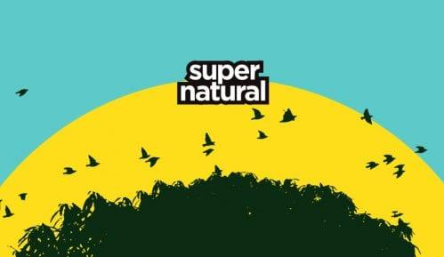 Supernatural festival 22. i 23. aprila na Adi Huji 14