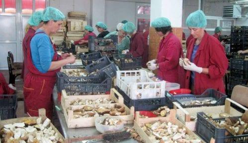 Šta koči brži razvoj malih i srednjih preduzeća u Srbiji 10