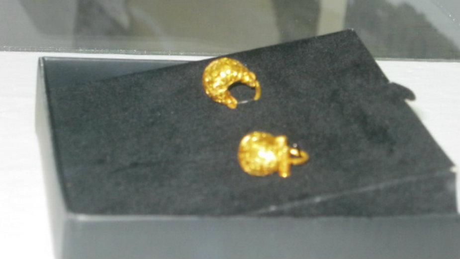 Predstavljene nausnice sa grbom dinastije Paleologa 1