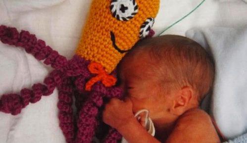 Hobotnice pomažu preveremeno rođenim bebama (VIDEO) 12