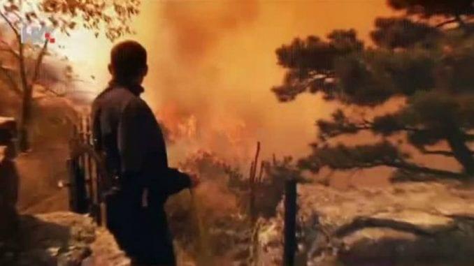 U požarima u Hrvatskoj izgorelo 4.500 hektara 3