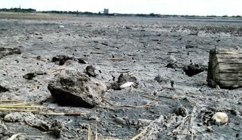 Suša isušila najveće slano jezero u Srbiji 10