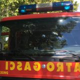 Lokalizovan požar u Naučnom institutu za veterinarstvo u Beogradu 1
