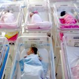 Demograf Penev o efektima mera za podsticanje rađanja: Od para važnija pouzdana država 8