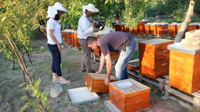 Pčelarima 20 miliona dinara 1