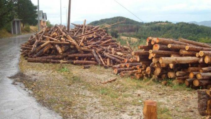 Zbog ilegalne seče godišnje nestane hiljade hektara šuma 4
