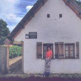 Sremski Karlovci: Topli mirisni kuglof 13