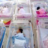 Knić: Duplo više beba nego pre četiri godine, mladi ostaju i zasnivaju porodice 8