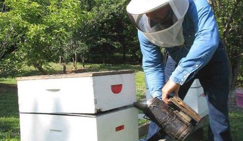 Loša godina za pčelare 5