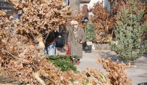 NP Fruška gora deli besplatno badnjake i upozorava građane da ne seku šumu 12
