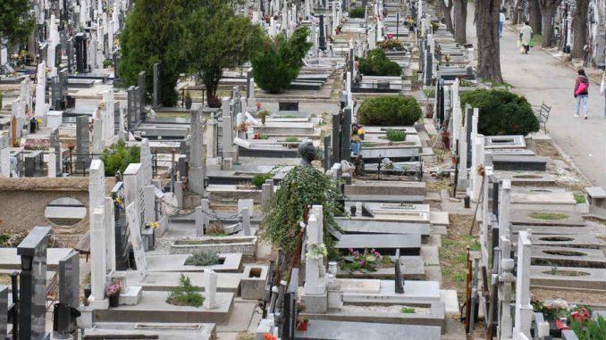 Na beogradskim grobljima skoro udvostručen broj sahrana 4