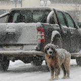 Grčka zavejana snegom 12