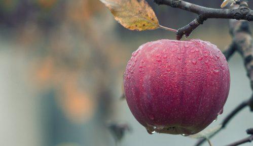 Jabuke ne bi trebalo da jedete uveče 4