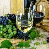 Slovenija izgubila spor sa Hrvatskom o nazivu vina teran 6