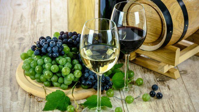 Prvi vinofest u Rekovcu 1