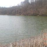 Jezero blizu Topole ostalo bez ribe 12