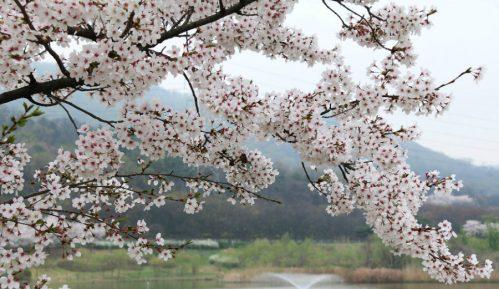 Prvi dan proleća, pomeranje sata 29. marta 6