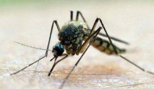 Srbija prijavila 385 zaraženih virusom Zapadnog Nila u 2018. 11