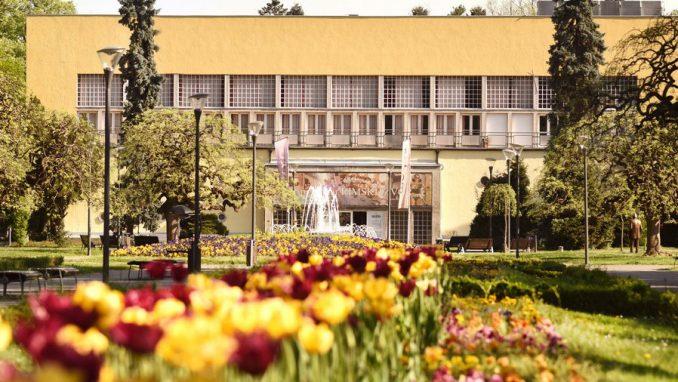 Egipatski turisti zainteresovani za banjski i zdravstveni turizam u Srbiji 3