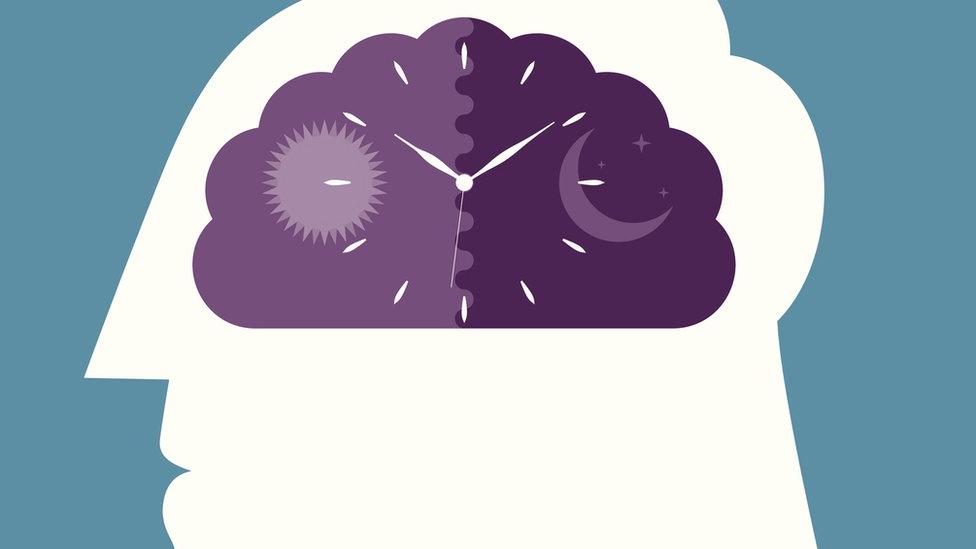 Animacija biološkjog sata u mozgu čoveka