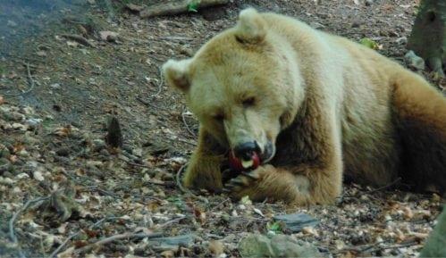 Bugarska: Mesta za povratak prirodi 8