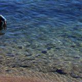 Čišćenje mora od nafte u Istri 10