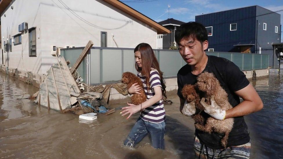 Stanovnici prefekture Okajama spašavaju pse od poplave