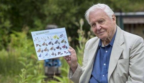 Dejvid Atenborou poziva da prebrojimo sve leptire na svetu 15