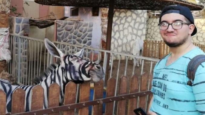 Egipatski zoo vrt na meti kritika zbog farbanja magarca u zebru 5