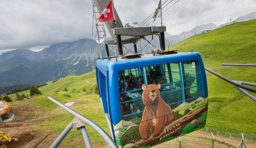 Hibrid mrkog i polarnog medveda uspešno zbrinut u Švajcarskoj 7