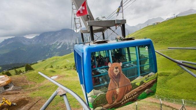 Hibrid mrkog i polarnog medveda uspešno zbrinut u Švajcarskoj 5