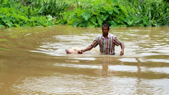 Skoro 400 mrtvih u poplavama u Indiji 4
