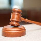 Zakazano suđenje Žarku Veselinoviću zbog nelegalne gradnje na Goliji 13