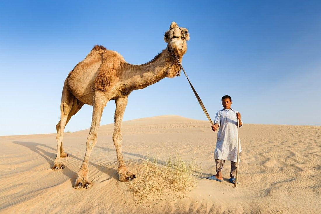 Dečak sa kamilom u Sahari