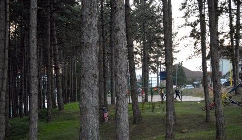 Da li će nestati jedina park-šuma u Požegi? 9